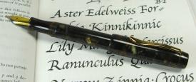 Wordsmith, small, in Classic Brown Pebble Italian acrylic